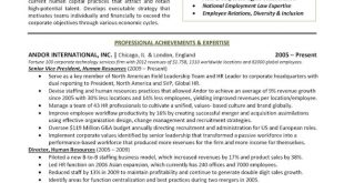 Resume Examples Executive