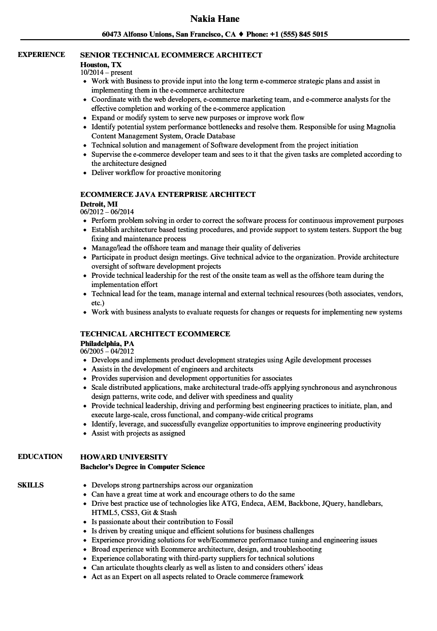 E Commerce Experience Resume Examples Resume Examples