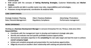 Resume Examples 2 Years Experience