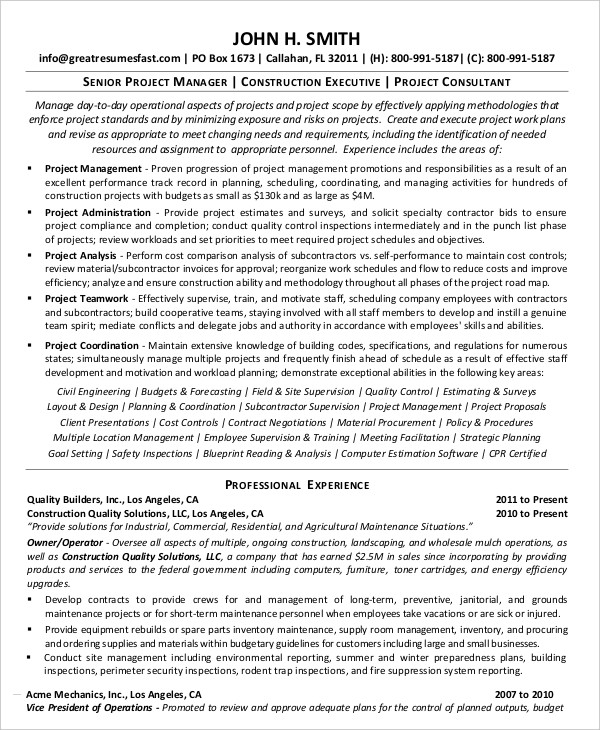 free resume templates senior project manager