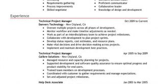 Resume Examples Project Manager