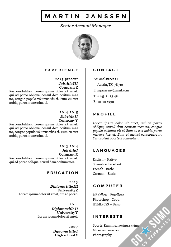 Cv Template Europe Resume Examples