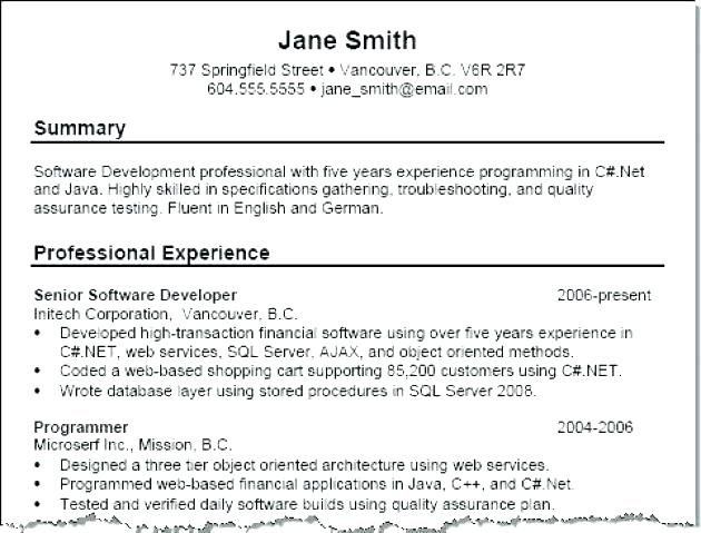 Summary On Resume Examples