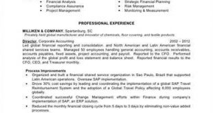 Resume Examples Big 4 Accounting