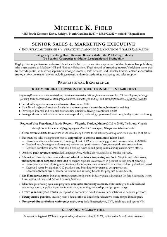 Resume Examples Vice President