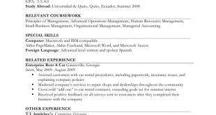Resume Examples Job Experience