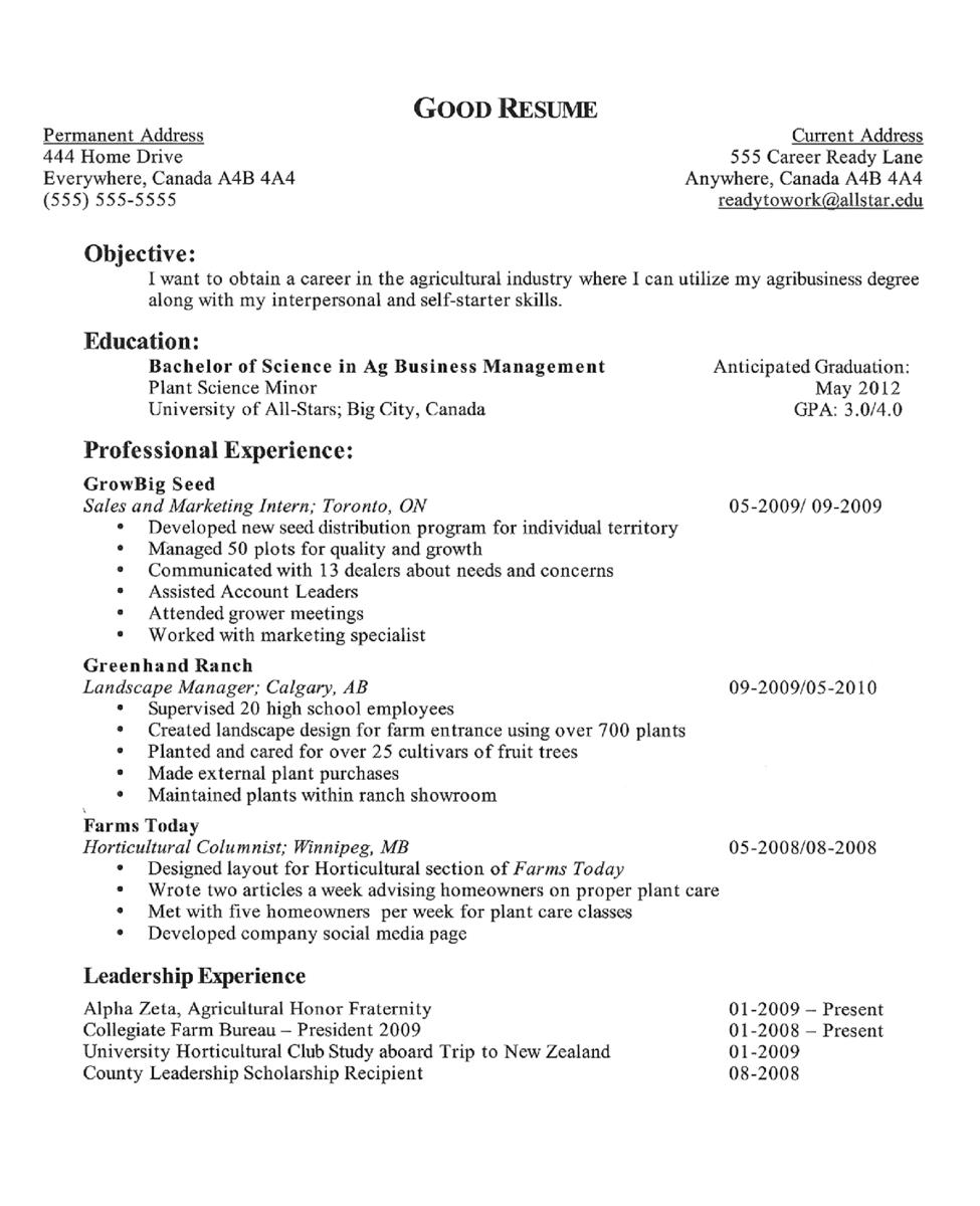 Resume Examples High School