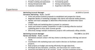 Resume Examples Account Manager