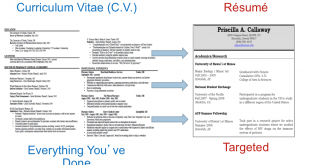 Cv Template Vs Resume