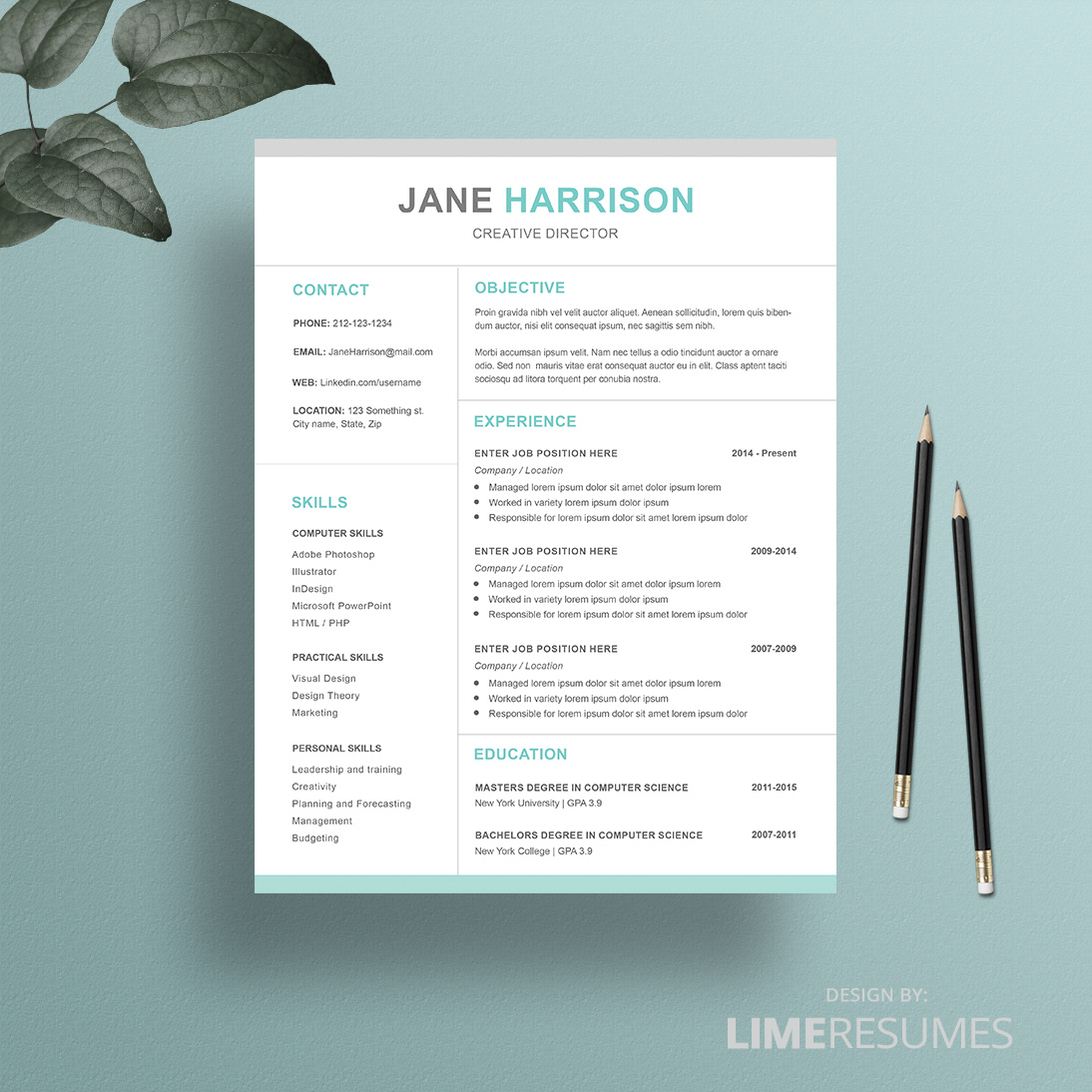 Free Resume Templates For Ipad 2