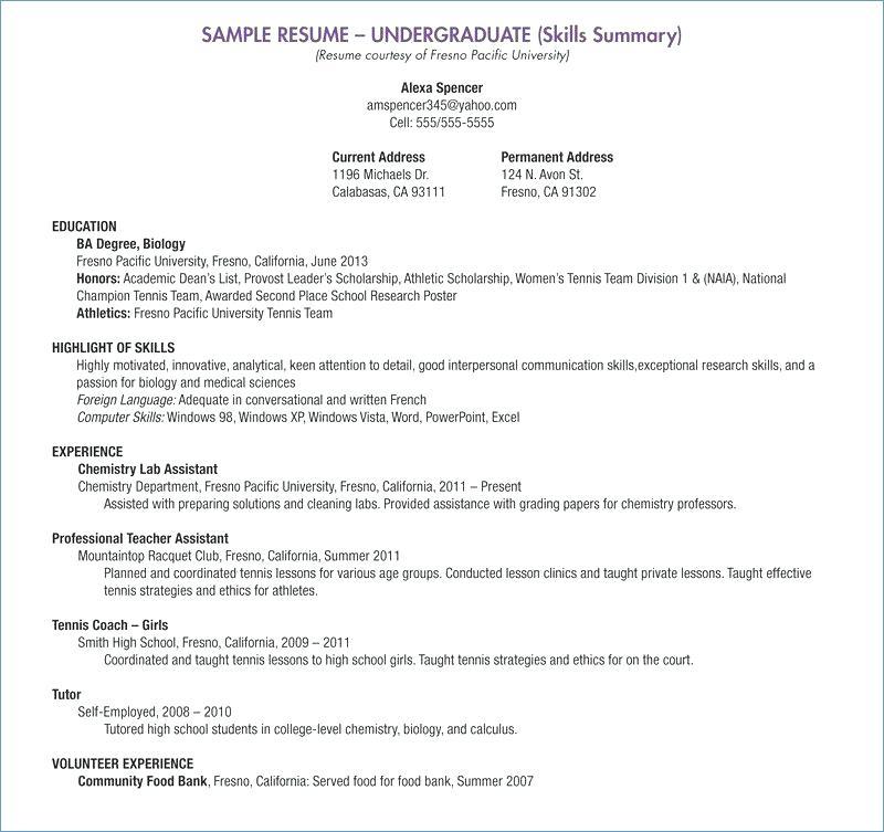 resume examples reddit