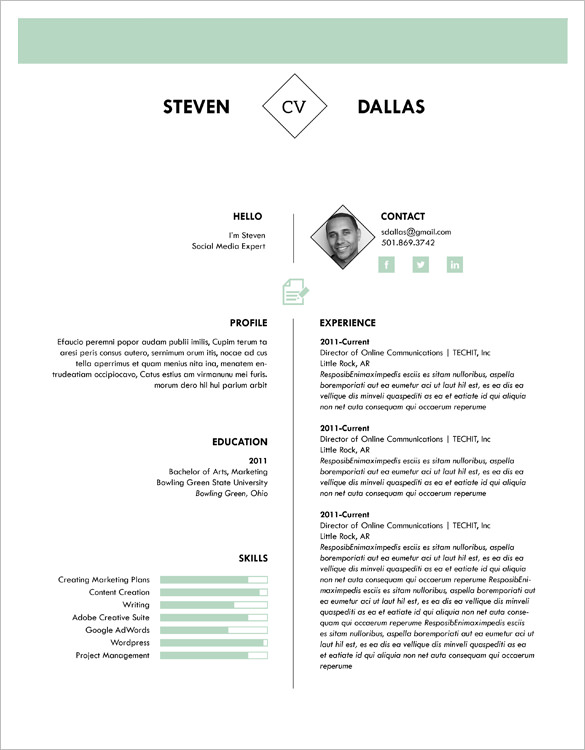 1 Page Cv Template South Africa